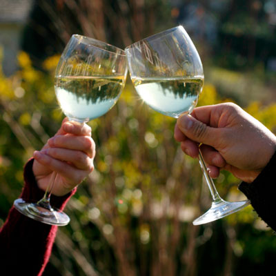 Summertime Sippers for the Serious & Semi-Serious WineCrowd